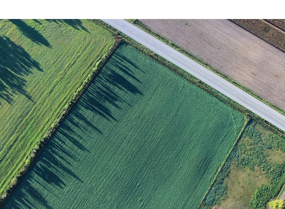 Процедура бесплатного получения земельного участка в собственность.